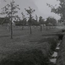 1968 vleddderveen, hertenkamp