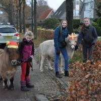 Sinterklaas_2018_(57)