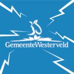 Inwoners Westerveld doen steeds meer zelf in 'BrinQ'