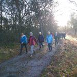 Sportief wandelen ook groot succes in Vledderveen!